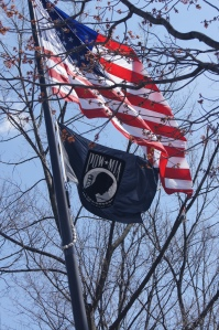 The flags flying at the Vietnam War Memorial