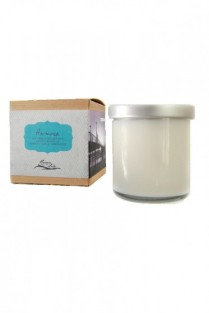 https://www.ravenandlily.com/hermosa-bamboo-lemongrass-candle/